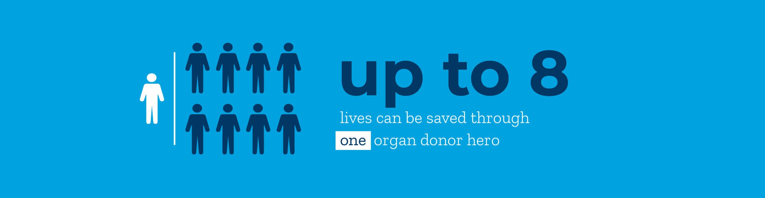 Infographic: up to 8 lives can be saved through one organ donor hero.
