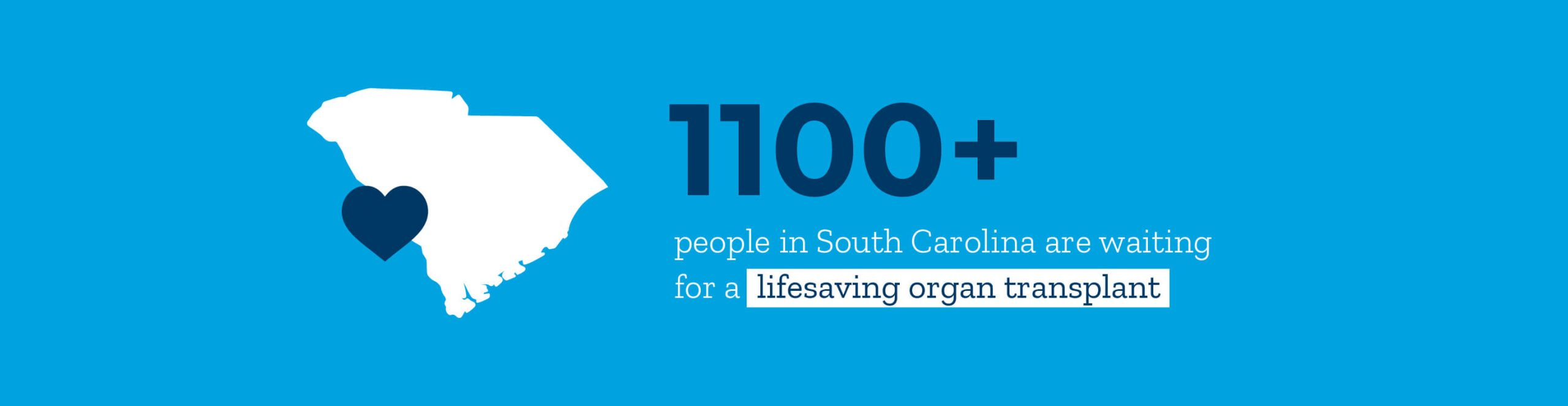 Infographic: over 1100 people in south Carolina are waiting for a lifesaving organ transplant.